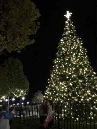 Christmas in downtown Napa Valley