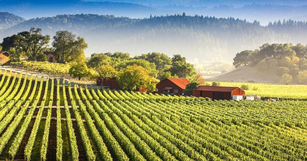 yountville community