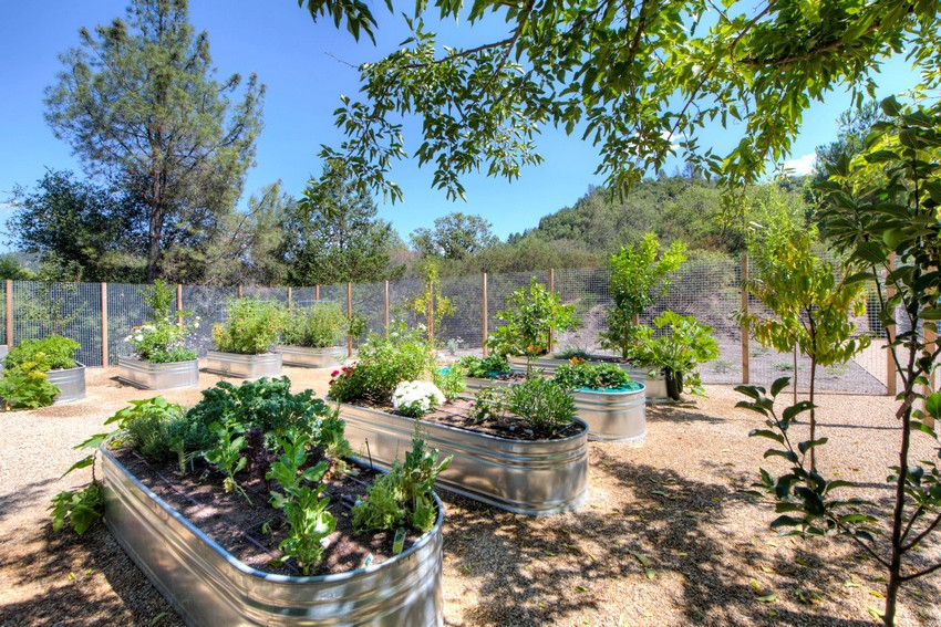 grow plants and mountain home ranch calistoga