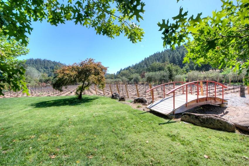 355-crystal-springs-road-vineyard-view