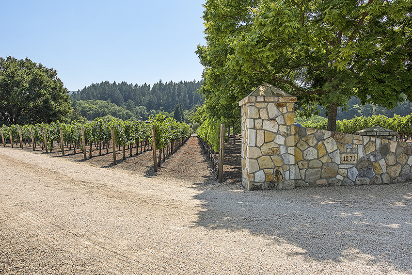 1871 Cabernet Lane Saint Helena entrance vineyard