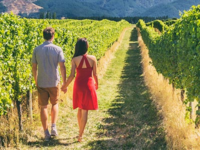 Tourism in Napa Valley California