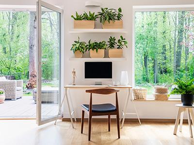 Home Office Setup Natural Lighting